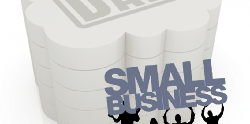 Does Big Data  have a Place in Small Businesses?