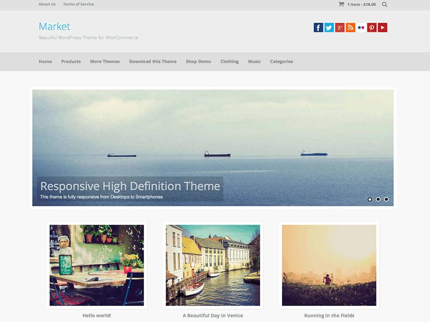 market WordPress Ecommerce Themes