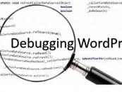 5 Debugging Tools For WordPress Developer