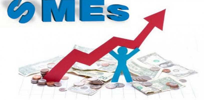 SME Expansion Faces Bottlenecks due to Lack of Capital and IT