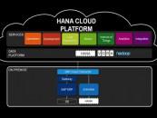 "Birlasoft's IoT Achieves Certification as ""Built on SAP HANA Cloud Platform"""