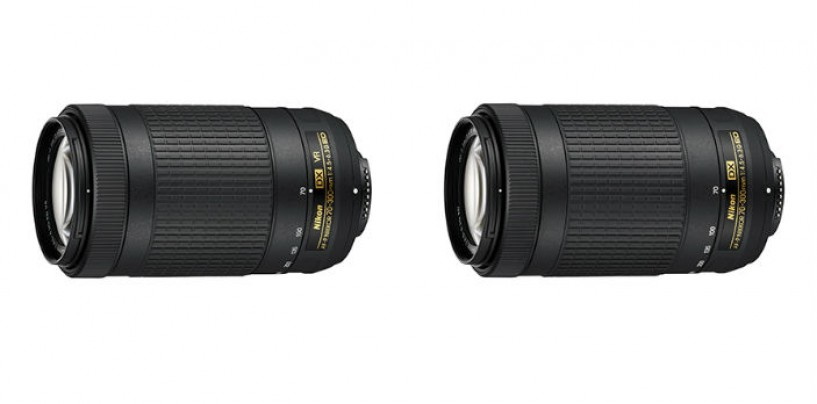Experience Telephoto Versatility with New NIKKOR AF-P Lenses
