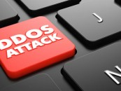 Businesses Blame Rivals for Staging DDoS Attacks