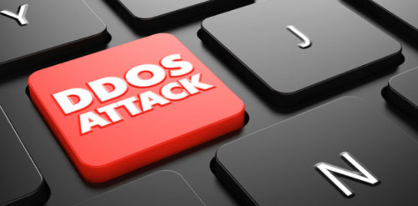 Four in Ten Businesses Unclear How to Save Themselves from DDoS