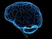 IBM creates AI models to detect Schizophrenia