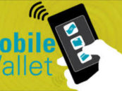 How are mobile wallets doing in India?