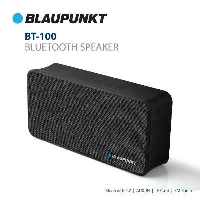 Blaupunkt BT-100 Bluetooth Speaker Review, Blaupunkt BT-100, Bluetooth Speaker, Review, Speaker Review